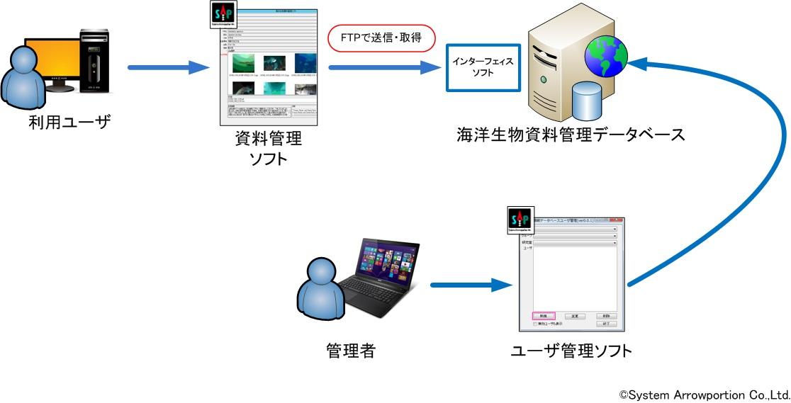 kaiyoseibutu2