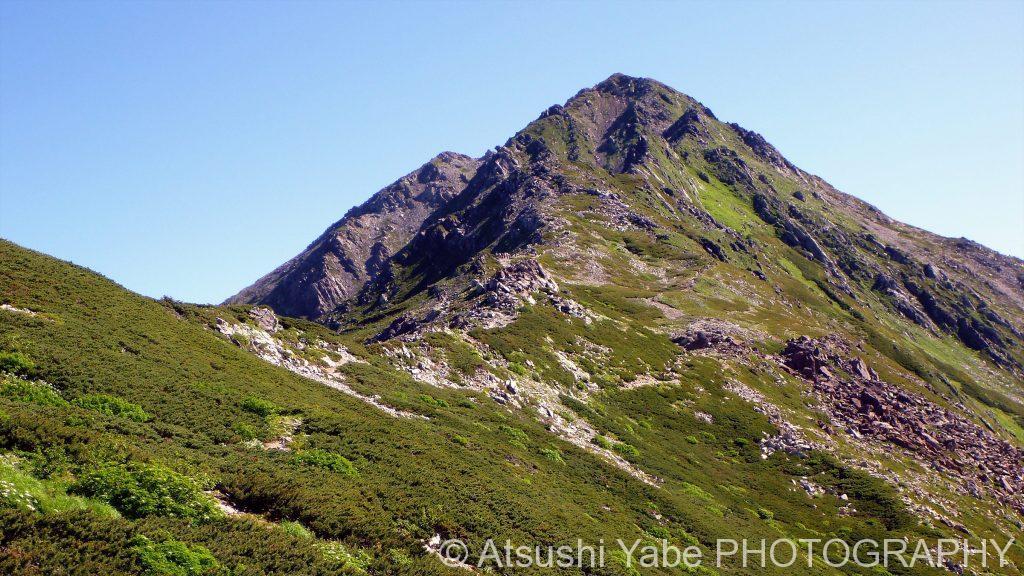 北岳への稜線(北岳山荘)