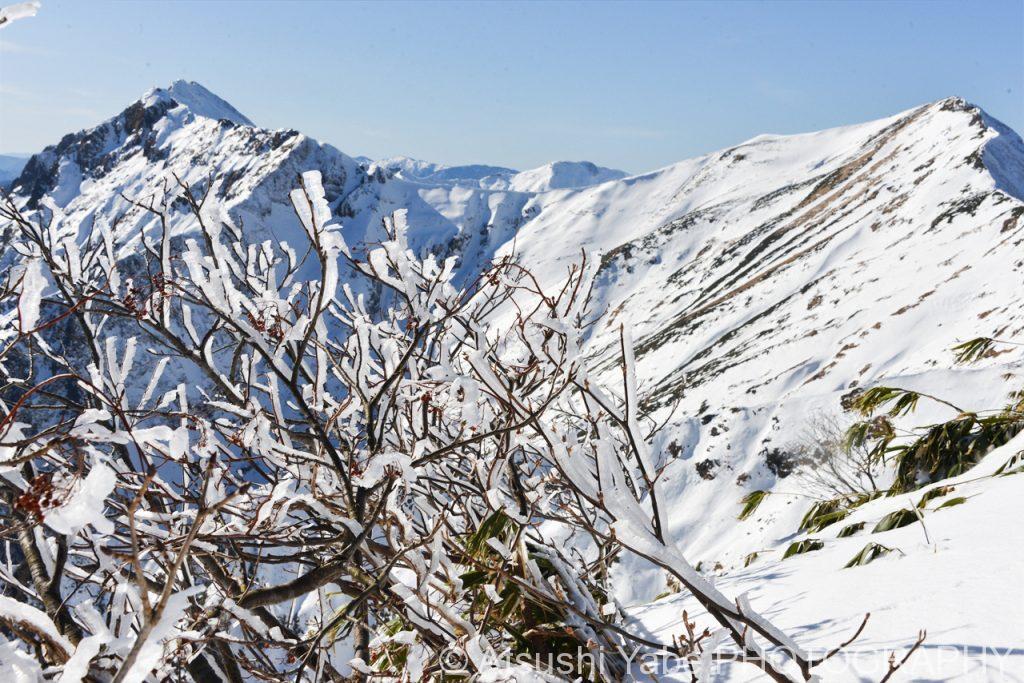 万太郎山に向かう稜線