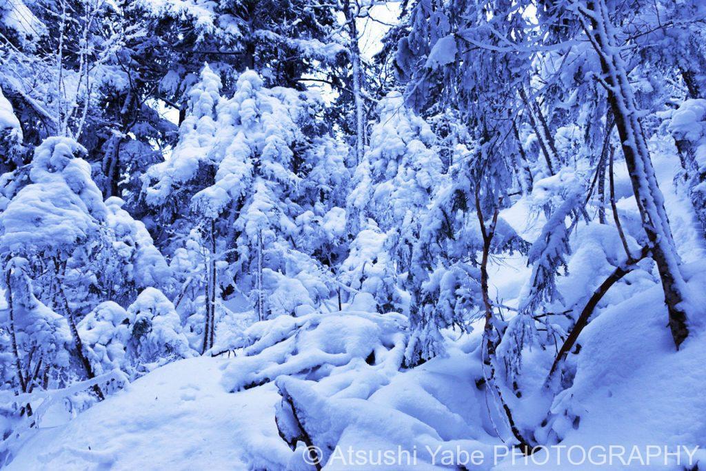 真冬の天狗岳登山 見渡す限りの雪