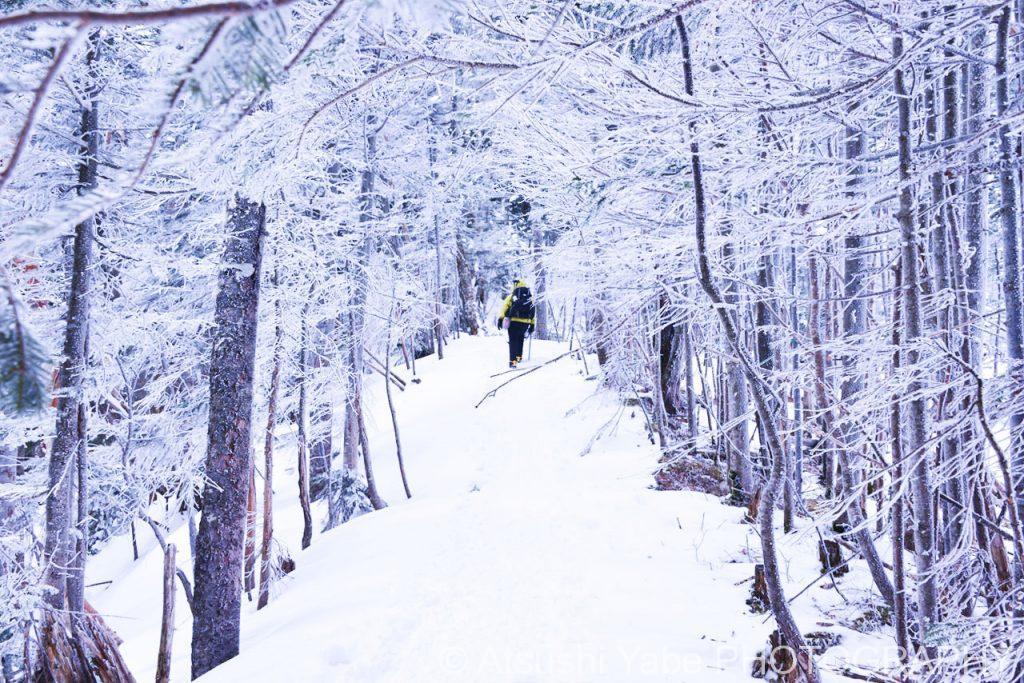 真冬の天狗岳登山 寒いです・・・でも綺麗です