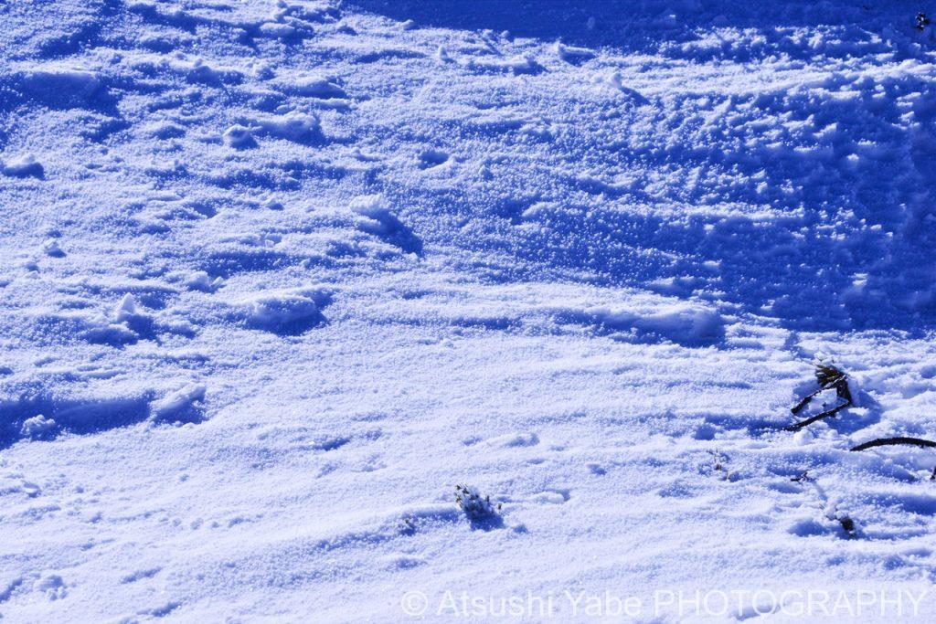 真冬の天狗岳登山 自然が生み出した静寂な世界