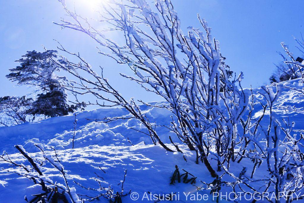 真冬の天狗岳登山 光り輝く景色