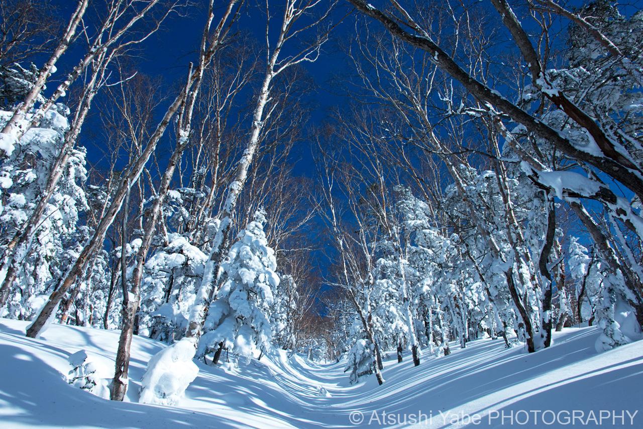 冬の日光白根山 (NO2)